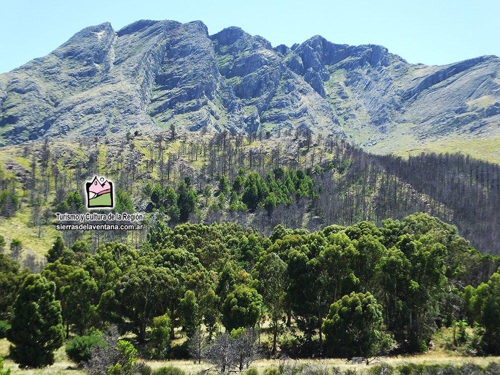 Cerro Ventana en Sierras de la Ventana
